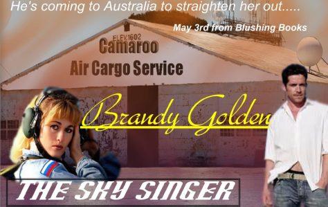 cropped-sky-singer-webpage1.jpg